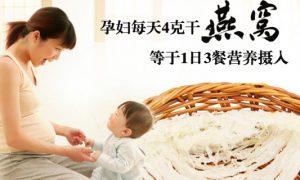 孕妇每天4克干燕窝=1日3餐营养摄入